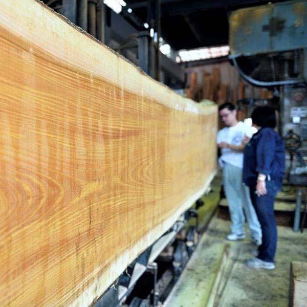 文化財講座技術編 第6回「無鄰菴の銘木・木材の世界」