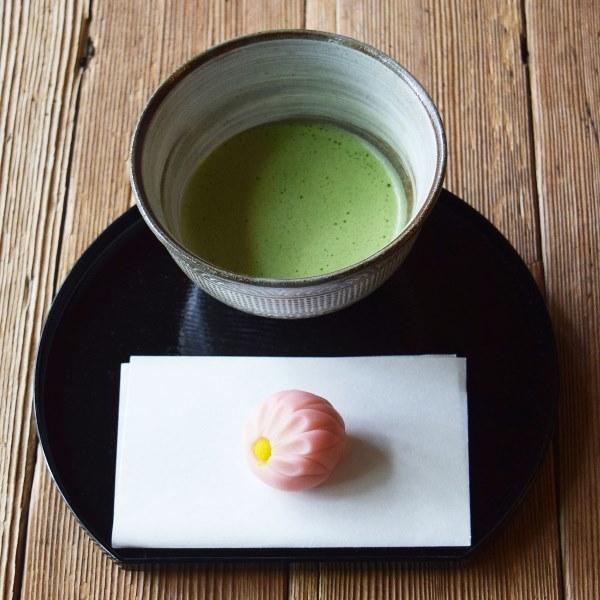 限定茶菓子 霜降 練り切りピンク菊