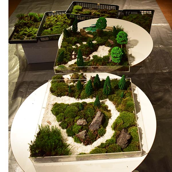 苔庭づくり