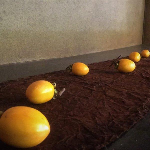限定茶菓子 立冬 練り切り柿