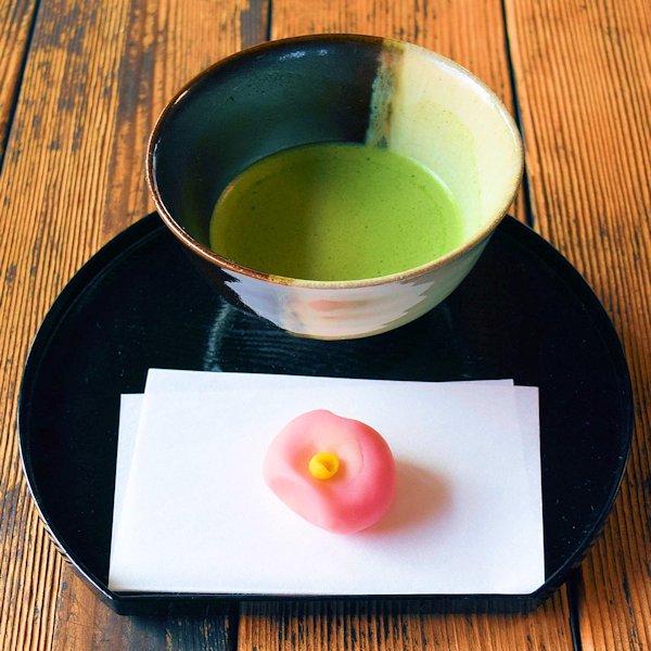 限定茶菓子 大雪 練り切り山茶花