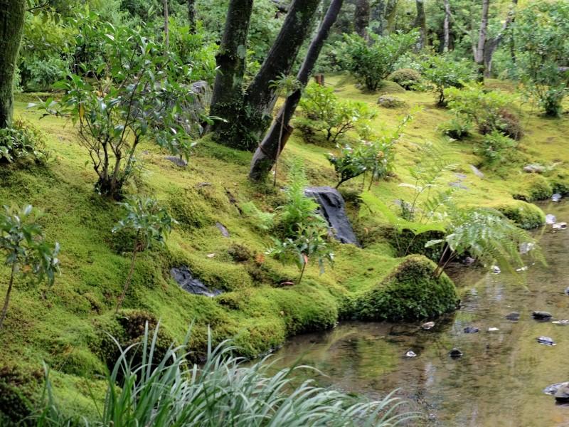 三段の滝から母屋方向を望んだ風景