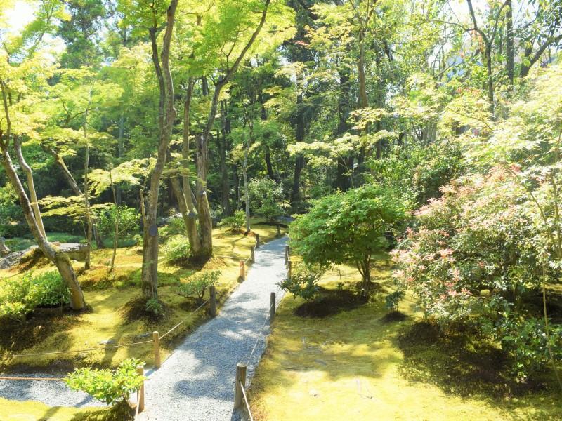 三段の滝へ続く園路の風景