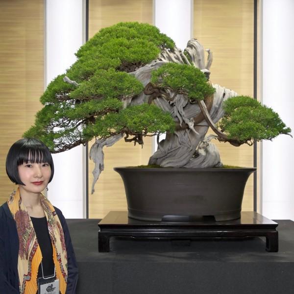 連続講座「日本盆栽、小さな巨木—盆栽からBONSAIへ!その愉しみを知る通史」全3回  第2回 室町から江戸まで