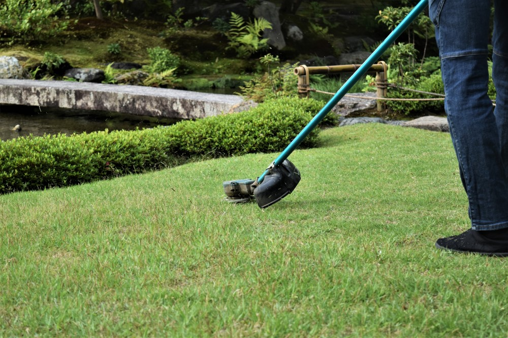 庭作業 芝手入れ