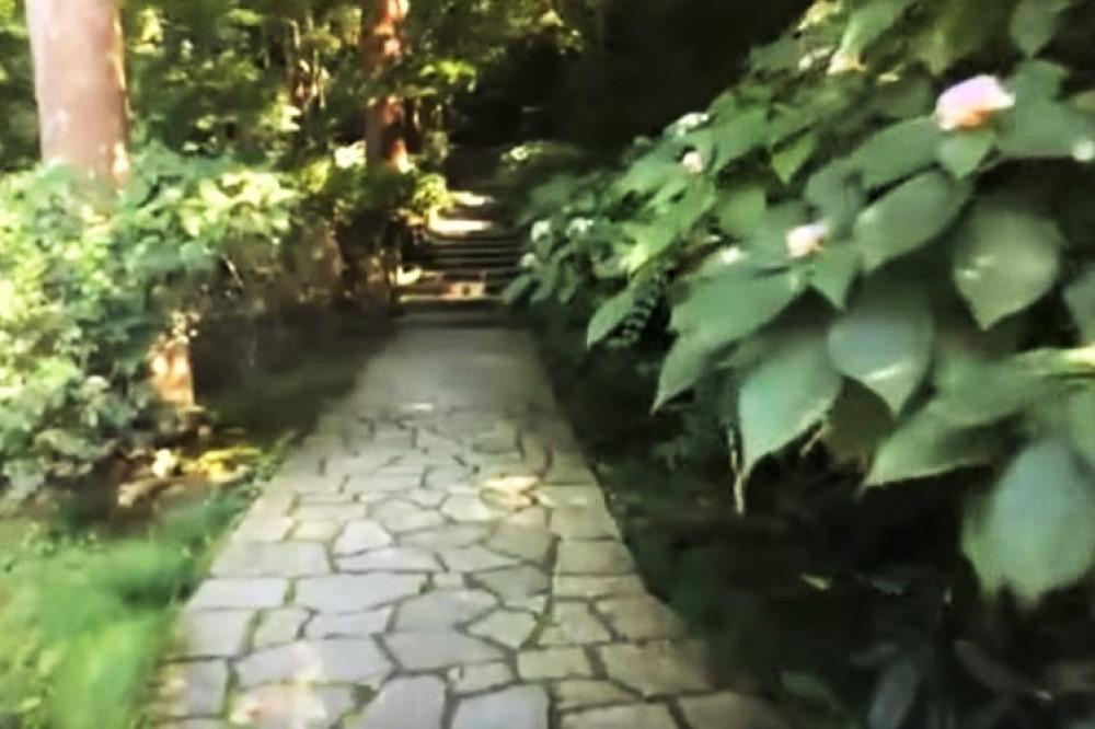 event-20210828 オンライン社長講座 瑞泉寺庭園